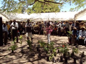 A Community Prepares to Plant Trees